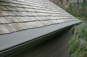 Gutter helmet cleveland gutters gutter guards seamless gutters when leaves pine needles and other debris clutter the gutters of cleveland and northeast ohio homes there is only one place to turngutter helmet by harry solutioingenieria Image collections