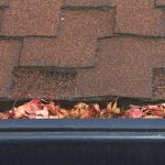 Roof tiles and gutter filled with leaves.