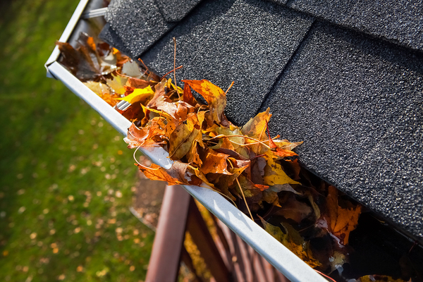 How Much Does It Cost To Replace Gutters In Wayne Pa